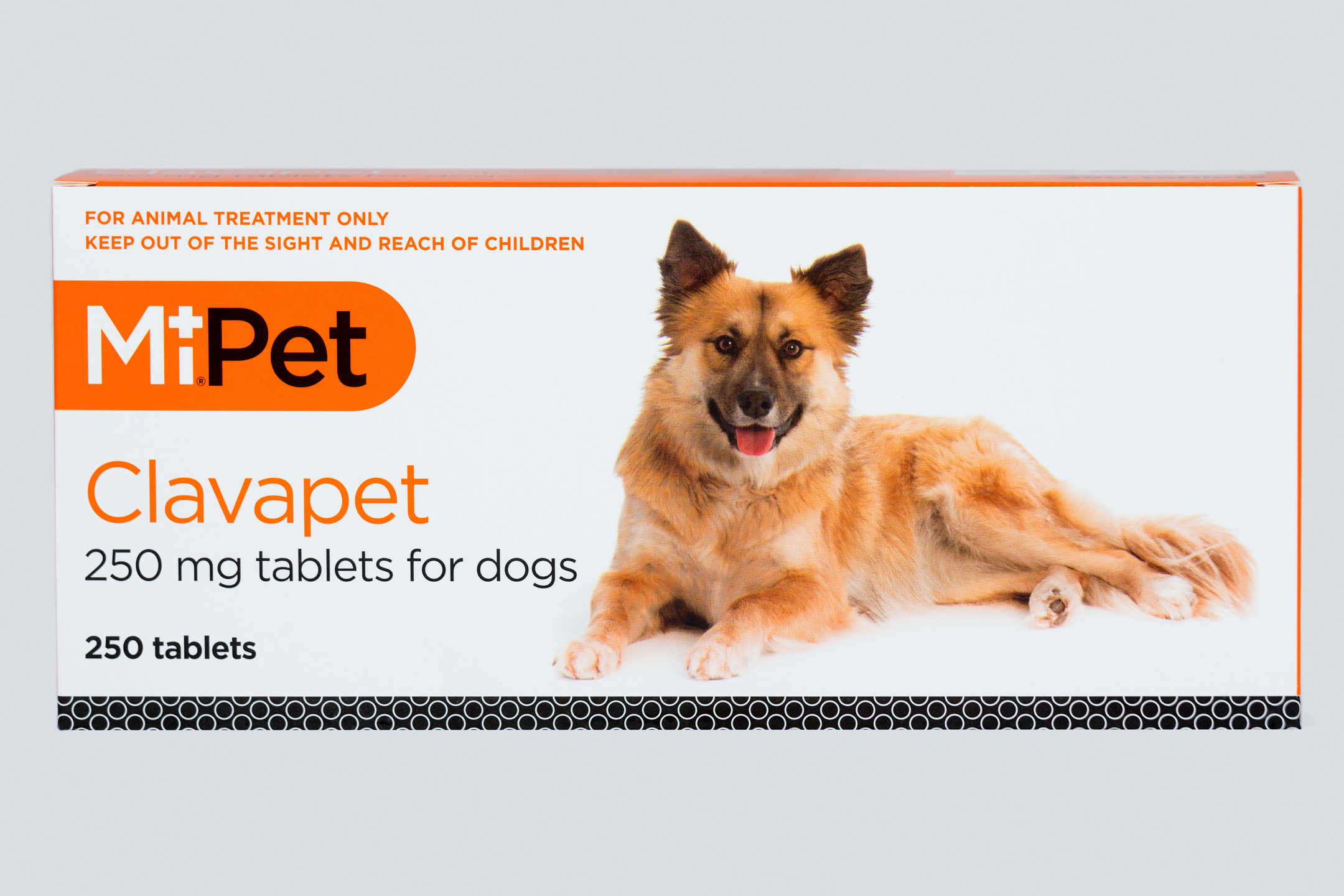 Pages 2016 02 09   clavapet 250mg x250 for dogs   www.josephcaseyphotography.com